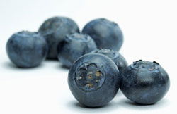 Blueberries, Blackberries and Elderberries are good for Hay Fever symptoms